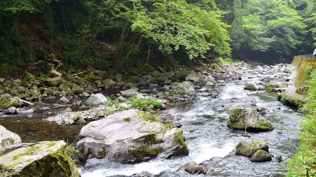 渓流イメージ